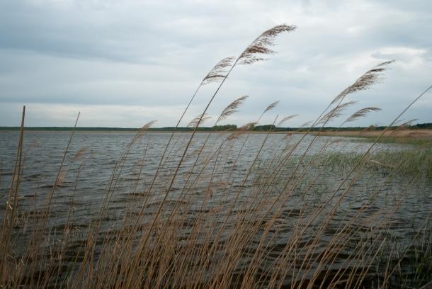 Jezioro Świdwie