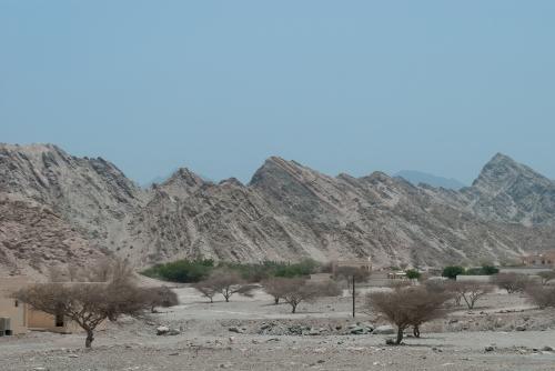 Widok, którego się nie obejrzy w ramach zorganizowanej wycieczki: nic, czyli emiracka wioska