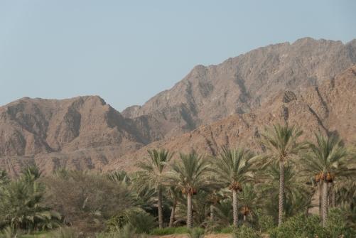 Kontrasty: tryskająca zielenią oaza w Bidyi, a w tle surowe góry