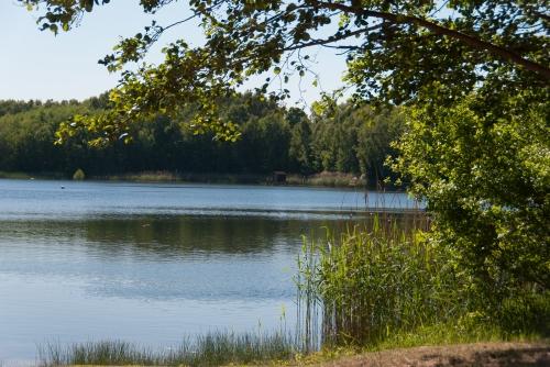 Jeziorko Obersse tuż przed Blankensee